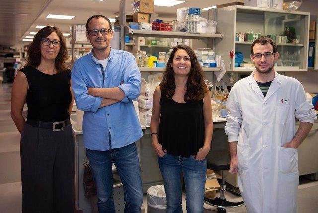 """Grupo de investigación del IDIBAPS """"Tráfico de lípidos y enfermedad"""", formado por Marta Bosch, Albert Pol, Alba Fajardo y Frederic Morales Paytuví."""