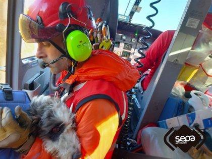 Rescatan a un hombre y su perro en el pico Turbina, en Peñamellera Alta