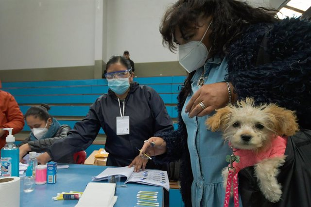 """Bolivia.- La OEA constata una jornada electoral """"pacífica"""" en Bolivia y pide cal"""