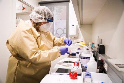 Detectado un brote de coronavirus en la residencia de estudiantes Les Roches de Marbella con 24 casos confirmados