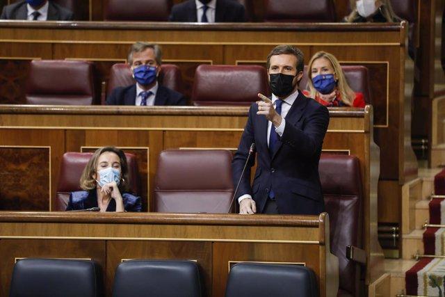 El president del PP, Pablo Casado, intervé durant una sessió de control al Congrés dels Diputats.