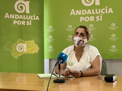 """Los andalucistas de Alcalá (Sevilla) piden """"escuchar a los empresarios"""" y desligar el festivo local del """"Black Friday"""""""