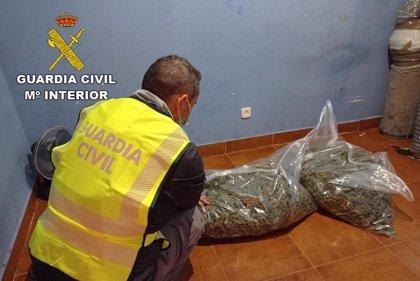 Sucesos.- Detenidas 14 personas en El Casar por delitos de robo con violencia e intimidación y cultivo de marihuana
