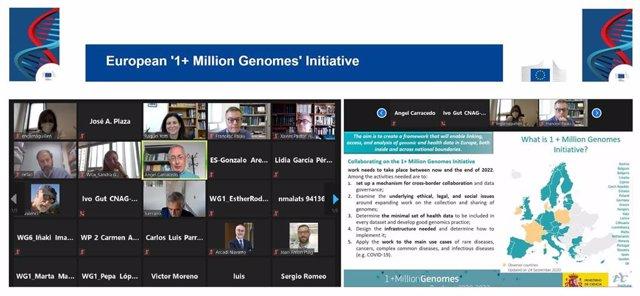 Un momento del encuentro online que han mantenido los representantes españoles en la iniciativa europea '1+ Million Genomes'.