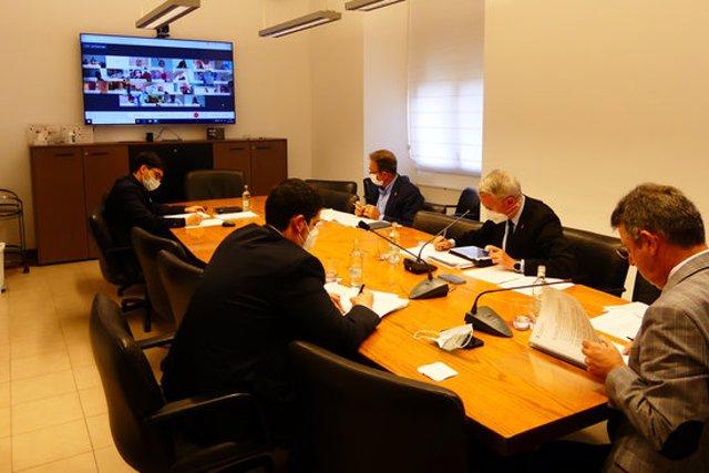 Pla general del ple telemàtic de la Diputació de Girona aquest 20 d'octubre del 2020. (Horitzontal)