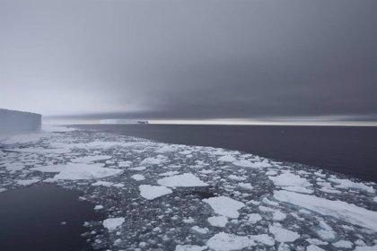 Fondos de mar antártico se calientan cinco veces más que el promedio