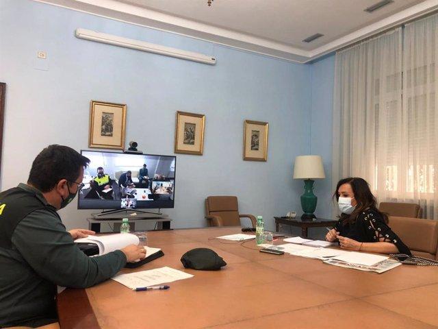 Reunión telemática de la Junta Local de Seguridad de Siles.