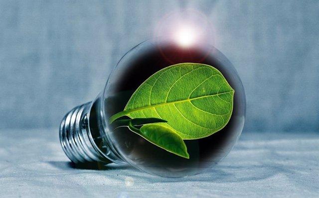 Día Mundial del Ahorro de Energía: Productos Smart Home que permiten tener un ho