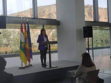 AV.- Andreu anuncia el confinamiento perimetral de La Rioja y el cierre de los establecimientos a las 21,00 horas