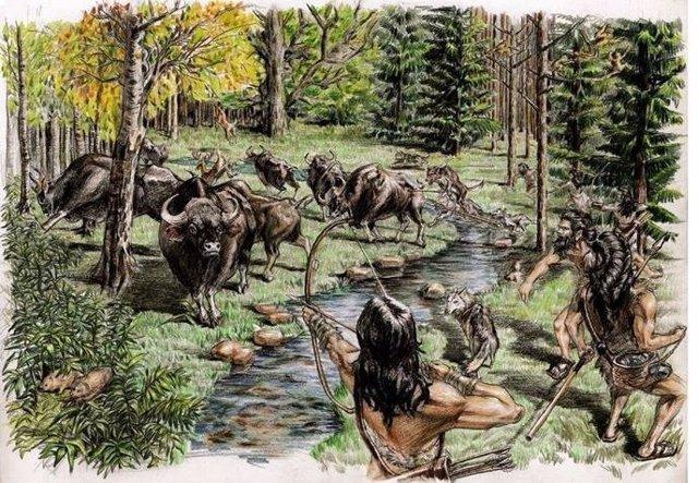 El rinoceronte poblaba el Tíbet hace 5.000 años