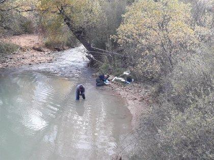 El último informe de evaluación del río Guadalope confirma el buen estado ecológico de la masa de agua