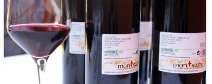 El sector vitivinícola catalán podría reducir un 28% su huella de carbono reutilizando botellas