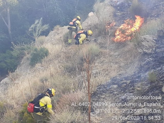 Bomberos forestales trabajando contra un incendio. Foto de archivo