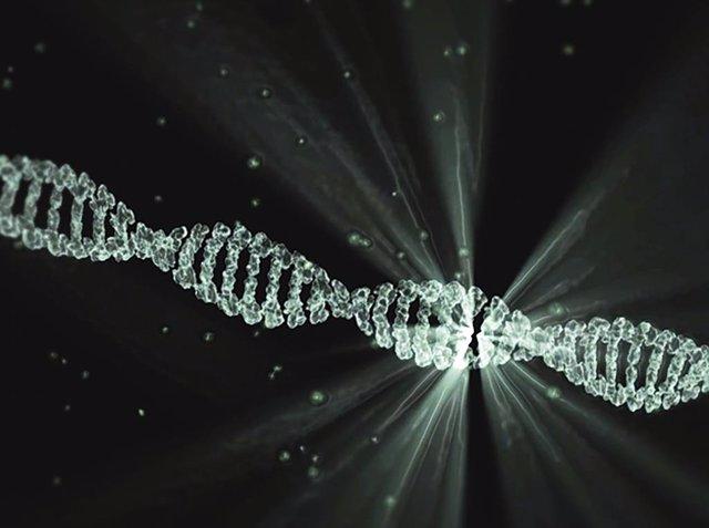 Los científicos dan un gran paso hacia la terapia génica del síndrome de Angelma