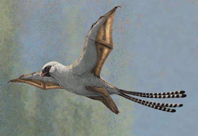Pequeños dinosaurios desarrollaron la capacidad de planear