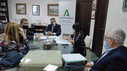 """Educación.-La Junta refuerza los centros educativos de Andújar con """"más docentes, desinfección e infraestructuras"""""""