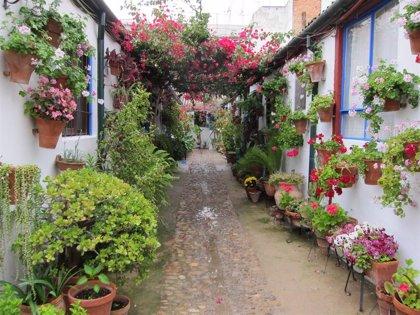Voluntarios de La Caixa organizan una visita virtual de los Patios de Córdoba para 75 personas mayores