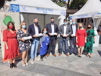 El Mercado Sabor a Málaga abre sus puertas en Mijas con la gastronomía de casi una veintena de empresas