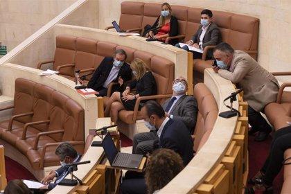 El Pleno debate el convenio sanitario con CyL, Atención Primaria y la mina de zinc