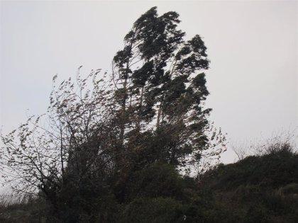 Las rachas de viento alcanzan los 127 kilómetros por hora en Orduña durante la madrugada
