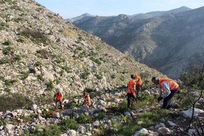 Aquae (Hidraqua) recibe el triple sello del Ministerio de Transición Ecológica por su proyecto 'Sembrando Oxígeno'