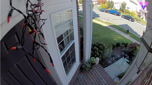 La cámara de vigilancia de una casa graba el momento en que una niña de 22 meses abre la puerta y deja salir a su perro al jardín