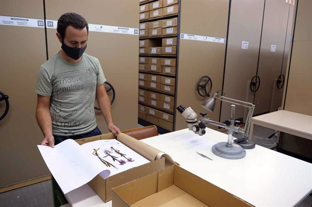 Más de 100.000 ejemplares de plantas de unas 6.000 especies diferentes se encuentran bajo custodia  de el 'Herbario MGC'