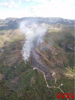 Los Bombers de la Generalitat trabajan con 52 medios terrestres y 9 aéreos en la extinción de un incendio forestal en la sierra de Tivissa (Tarragona).