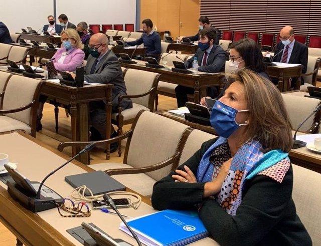 La diputada del PP Isabel Borrego