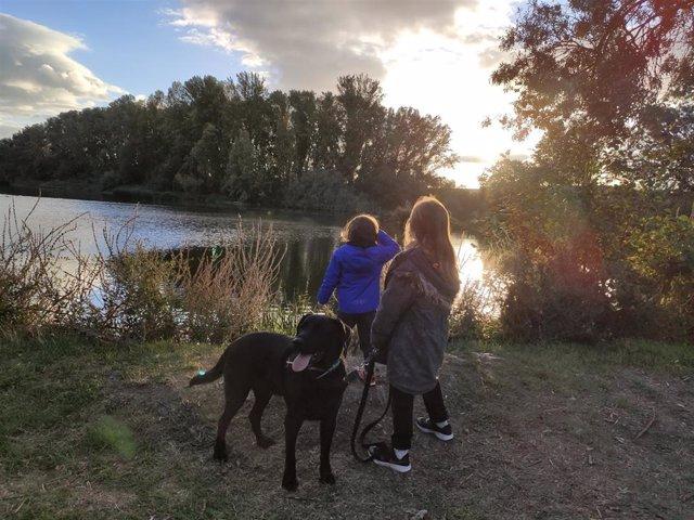 Dos niños pasean un perro.