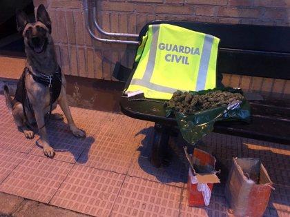 Guardia Civil detiene a dos personas por tráfico de drogas en sendos controles de seguridad ciudadana