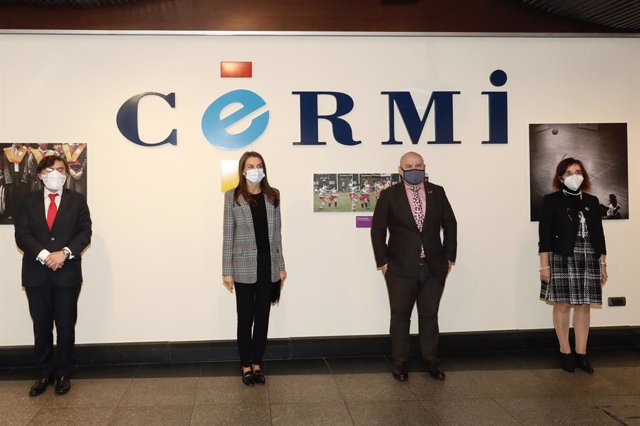 Cvirus.- CERMI expone a la Reina el impacto de la pandemia en las personas con d