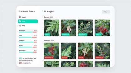 Microsoft lanza Lobe, una app para entrenar modelos de aprendizaje automático con imágenes