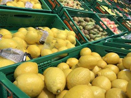 Mercadona compra 21.500 toneladas de limón para 2020, muchas de ellas de Almería, Málaga, Sevilla, Córdoba o Huelva