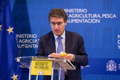 El Gobierno repasa con el Consejo Provincial del Aceite de Oliva de Jaén la situación del mercado y su futuro