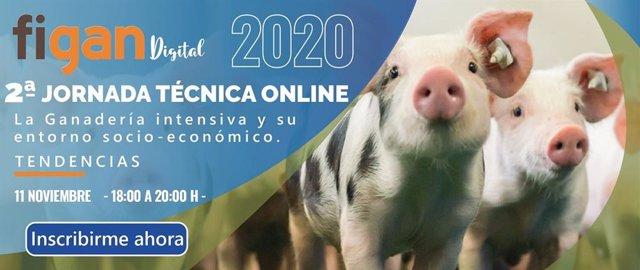 Sesión técnica online en FIGAN.