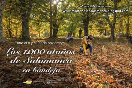 Peñaparda, Puente del Congosto, Saldeana, La Alberca y Valdelosa mostrarán sus encantos en 'Los 1000 otoños de Salamanca