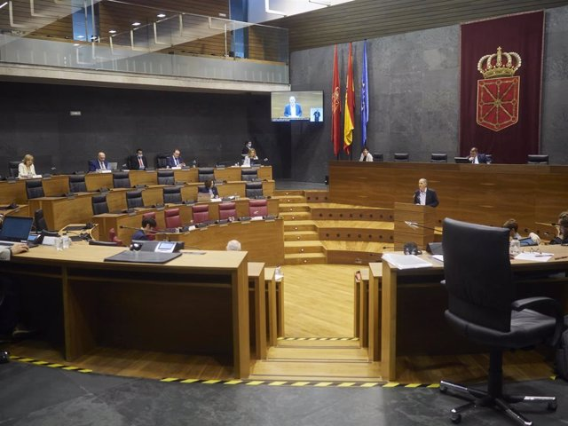 Vista general en el Parlamento de Navarra