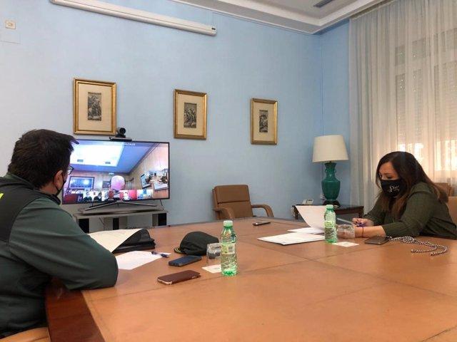 Reunión telemática de la Junta Local de Seguridad Ciudadana de Pozo Alcón.