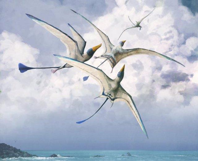 Rhamphohynchus: una de las 75 especies de pterosaurios estudiadas por los investigadores