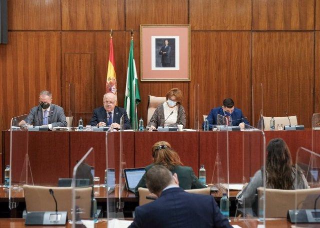 Sesión de la comisión de Salud y Familias del Parlamento andaluz, con la comparecencia del consejero de Salud y Familias, Jesús Aguirre.