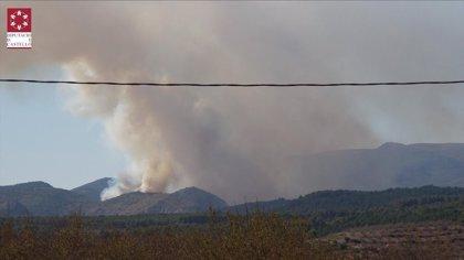 Medios terrestres y aéreos trabajan en la extinción de un incencio forestal en Bejís