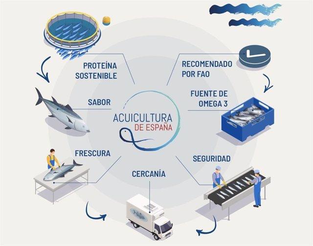 Presentación del proyecto Acuicultura de España y Memoria de Sos