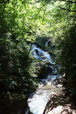 Fonts del Llobregat, río, bosque, turismo