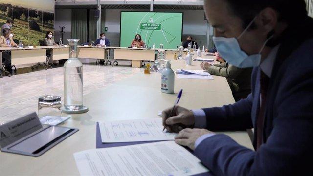Np Junta, Ayuntamientos Y Arroceros Implantan Un Modelo Sostenible Para La Gestión De Rastrojos (Consejería De Agricultura, Ganadería, Pesca Y Desarrollo Sostenible)