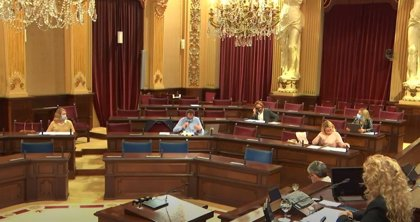 El Parlament insta al Govern a acercar a la ciudadanía la producción artística