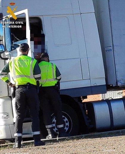 Investigados un empresario y un camionero por manipular el tacógrafo de un camión de ganado en Feria