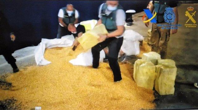 Cocaína intervenida entre sacos de maíz procedente de Brasil con destino a Cádiz