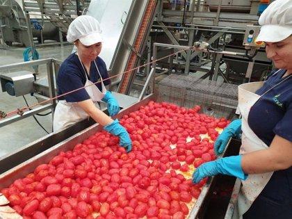 Agricultura abona en octubre 268,5 millones de euros a profesionales del campo en Extremadura
