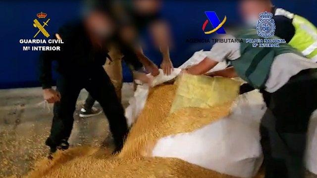 Intervenida más de una tonelada de cocaína oculta en sacos de maíz en un barco de Brasil, con destino Cádiz
